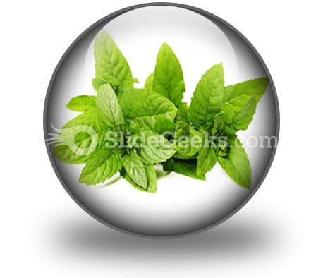 Fresh Green Mint Leaves PowerPoint Icon C