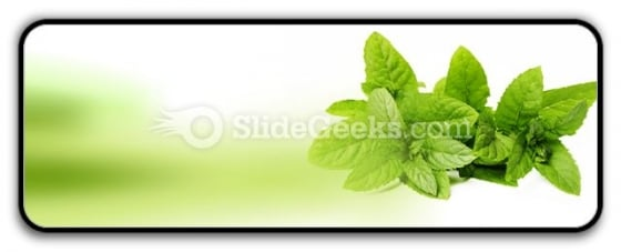 Fresh Green Mint Leaves PowerPoint Icon R