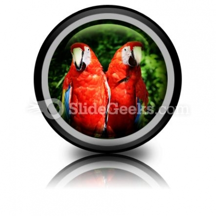 red_parrots_powerpoint_icon_cc