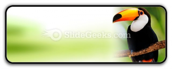 Toucan PowerPoint Icon R