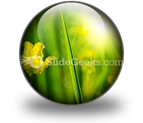 Wet Meadow Nature PowerPoint Icon C