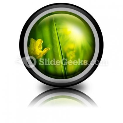 Wet Meadow Nature PowerPoint Icon Cc