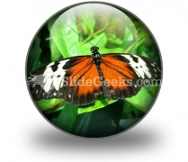 Big Butterfly PowerPoint Icon C