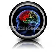 Brain PowerPoint Icon Cc