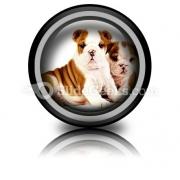 Bulldogs Animals PowerPoint Icon Cc