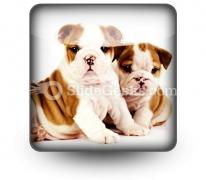 Bulldogs Animals PowerPoint Icon S