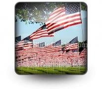 Flags PowerPoint Icon S