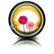 Flowers Nature PowerPoint Icon Cc