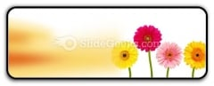Flowers Nature PowerPoint Icon R