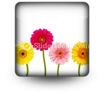 Flowers Nature PowerPoint Icon S