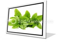 Fresh Green Mint Leaves PowerPoint Icon F
