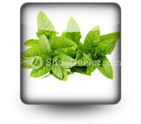Fresh Green Mint Leaves PowerPoint Icon S
