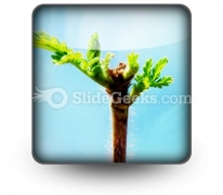 Beautiful Green Leaves PowerPoint Icon