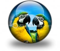 Parrots In Love PowerPoint Icon C