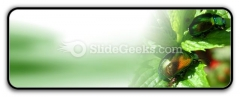 Shiny Beetles PowerPoint Icon R