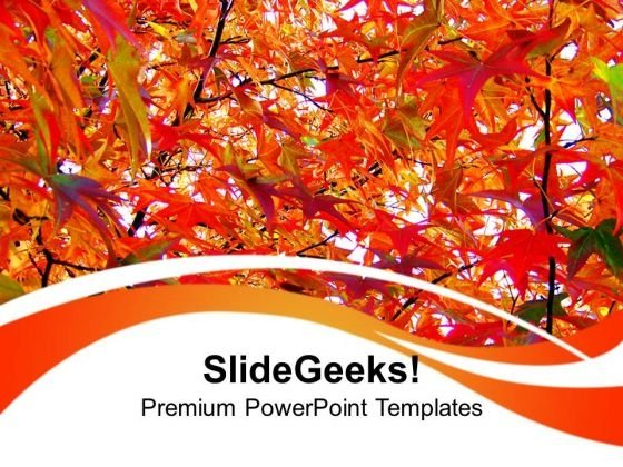 Autumn Leaves Nature PowerPoint Templates Ppt Backgrounds For Slides 0213