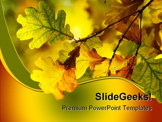 Autumn Leaves Shallow Nature PowerPoint Templates And PowerPoint Backgrounds 0511