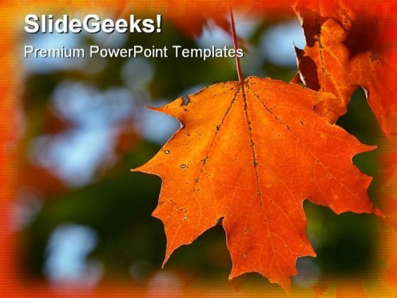 Fall powerpoint templates slides and graphics autumn maple leaf nature powerpoint template 1010 toneelgroepblik Choice Image