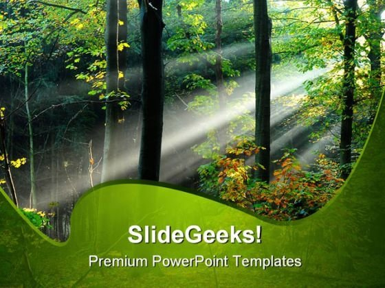 Beams Of Light Through Trees Nature PowerPoint Templates And PowerPoint Backgrounds 0211
