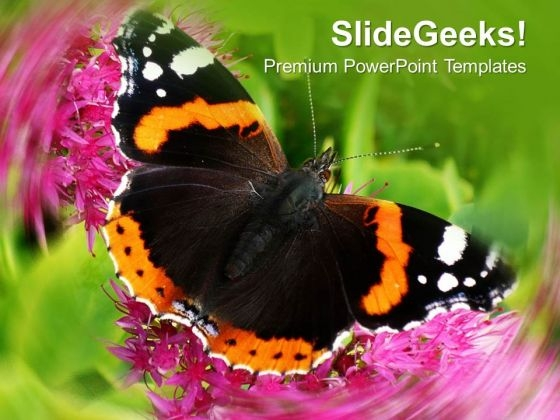 Beautiful Background With Butterfly PowerPoint Templates Ppt Backgrounds For Slides 0413