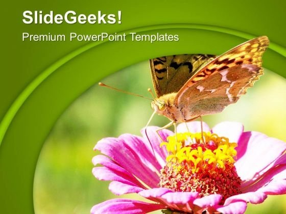 Beautiful Butterfly With Flower PowerPoint Templates Ppt Backgrounds For Slides 0713
