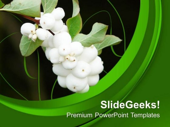 Beautiful Flower With Green Background Theme PowerPoint Templates Ppt Backgrounds For Slides 0713