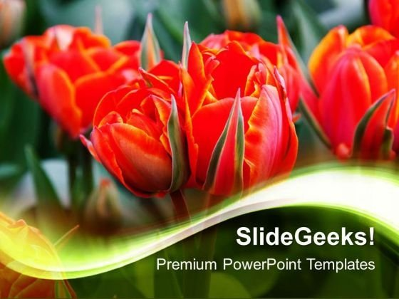 Beautiful Flowers Nature PowerPoint Templates And PowerPoint Themes 0512