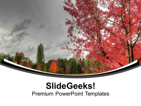 Beauty Of Nature With Autumn Background PowerPoint Templates Ppt Backgrounds For Slides 0613