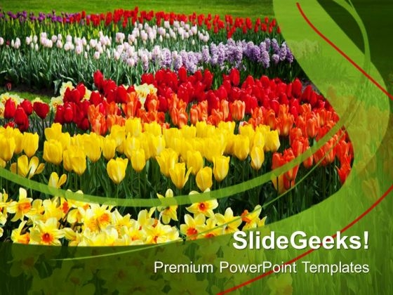 Blooming Spring Flowers Nature PowerPoint Templates Ppt Backgrounds For Slides 0213