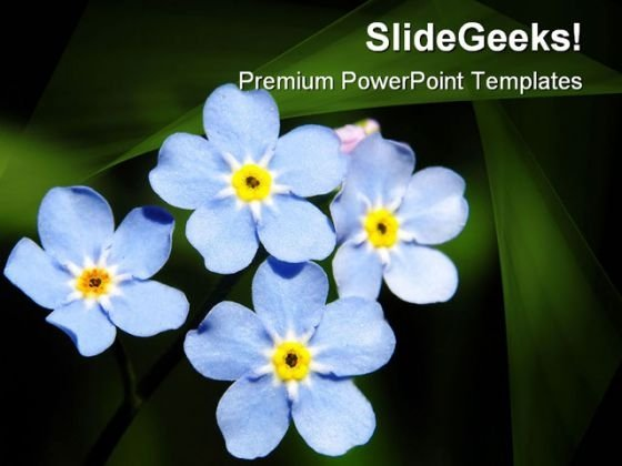 Blue Flowers Beauty PowerPoint Templates And PowerPoint Backgrounds 0311