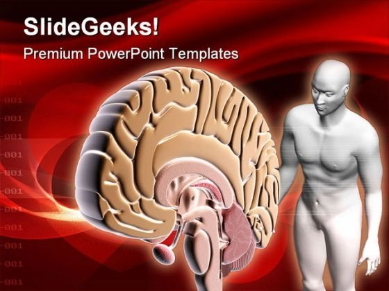 Brain Human People PowerPoint Template 0610