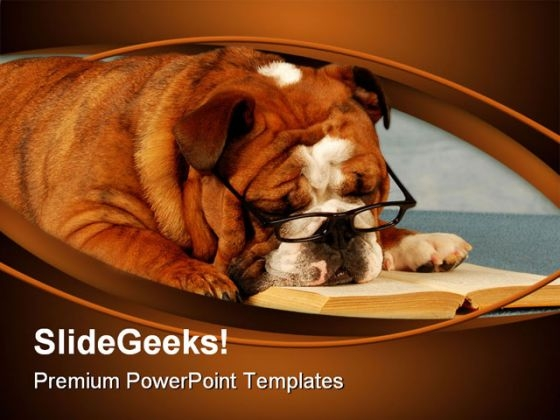 Bulldog Sleeping Animals PowerPoint Templates And PowerPoint Backgrounds 0211
