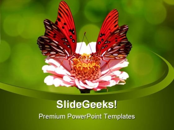 Butterfly Animal PowerPoint Themes And PowerPoint Slides 0511