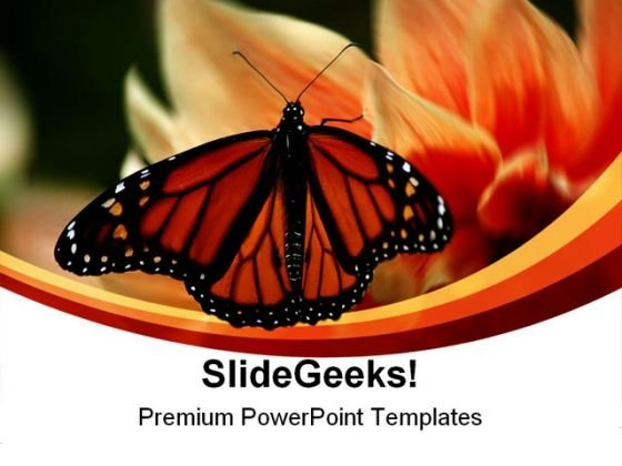 Butterfly Beauty Nature PowerPoint Themes And PowerPoint Slides 0211