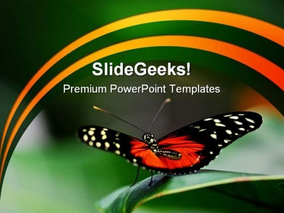 Butterfly Ready Animals PowerPoint Themes And PowerPoint Slides 0211