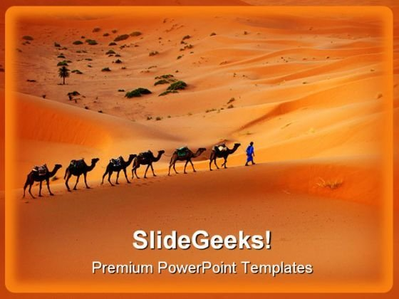 Camel Animals PowerPoint Themes And PowerPoint Slides 0211