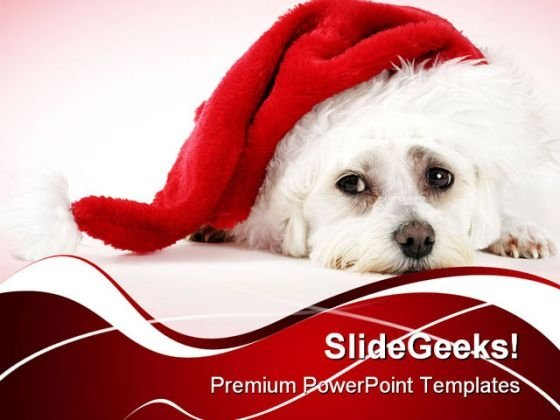 Christmas Pooch Holidays PowerPoint Templates And PowerPoint Backgrounds 0211