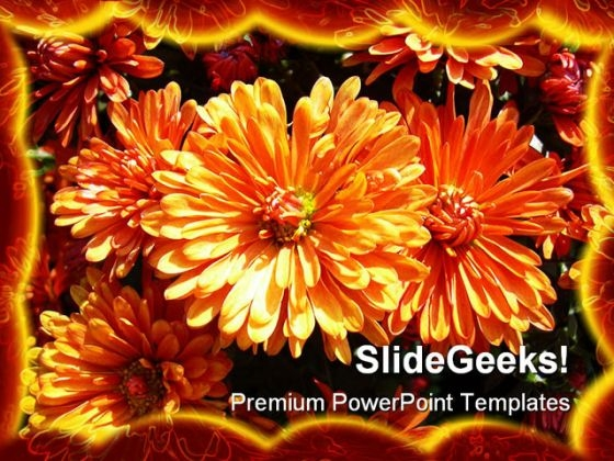 Daisies Beauty PowerPoint Template 1110