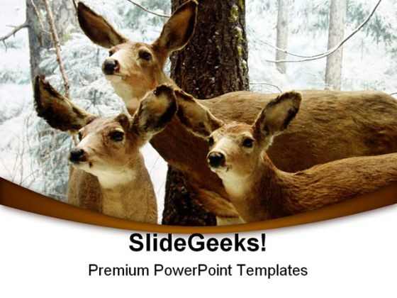 Deer Animals PowerPoint Themes And PowerPoint Slides 0211