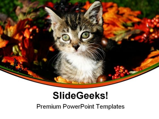Fall Kitty Animals PowerPoint Themes And PowerPoint Slides 0511