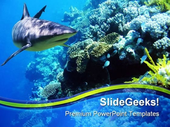 Fishreef Animal PowerPoint Template 1110