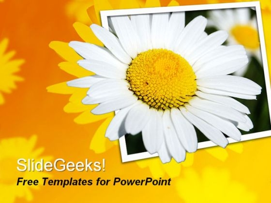 Beautiful Flower PowerPoint Template