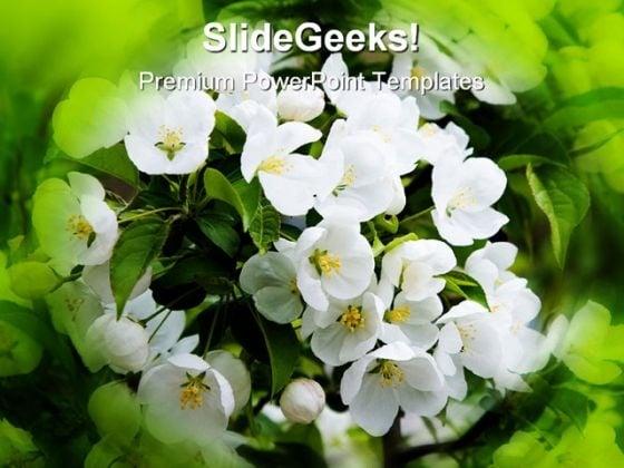 Flower Petals NaturePowerPoint Template 0610