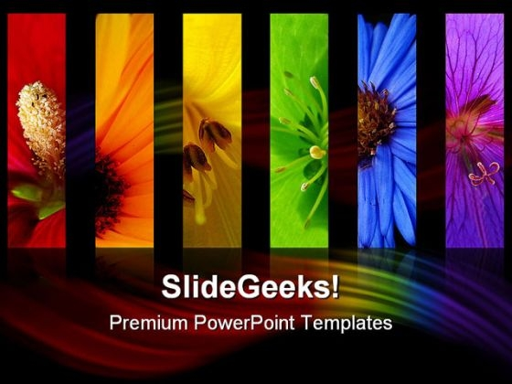 Flowers Rainbow Beauty PowerPoint Templates And PowerPoint Backgrounds 0611