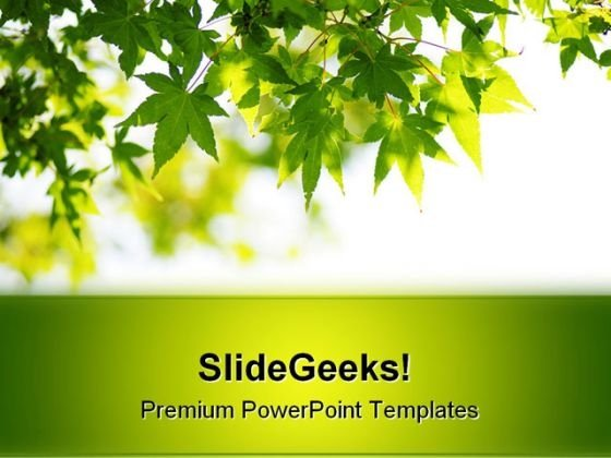 Fresh Green Leaves Nature PowerPoint Background And Template 1210