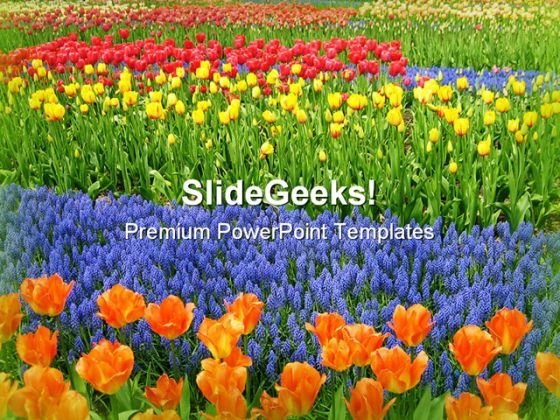 Garden Of Flowers Nature PowerPoint Themes And PowerPoint Slides 0511
