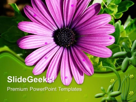 Gerbera Flower Nature PowerPoint Templates And PowerPoint Themes 0512