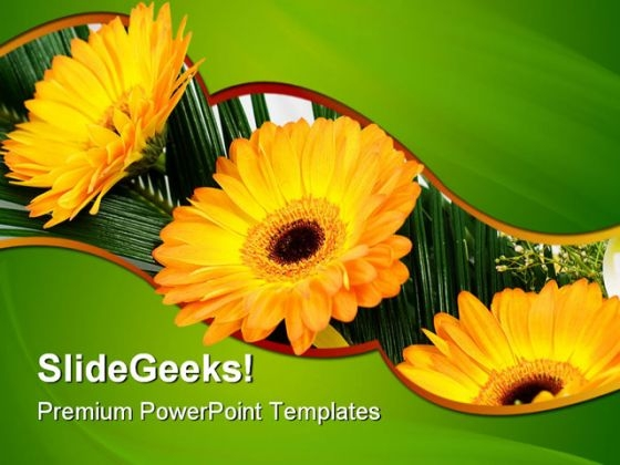 Gerbers Flowers Beauty PowerPoint Themes And PowerPoint Slides 0511