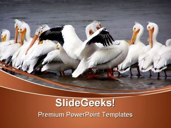 Gimme A Hug Animals PowerPoint Themes And PowerPoint Slides 0511