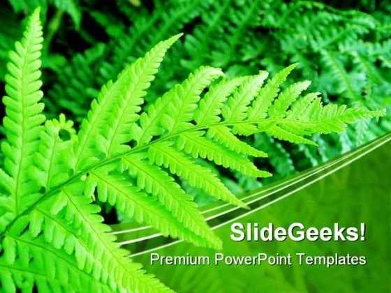 Green Fern Nature PowerPoint Themes And PowerPoint Slides 0411